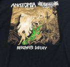 TS – ANATOMIA / CRYPTIC BROOD – Infectious Decay