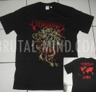 TS – CORONA VIRUS – World Tour 2020