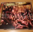 CD – INSALUBRITY – Salacious Putrescent Psychopathy